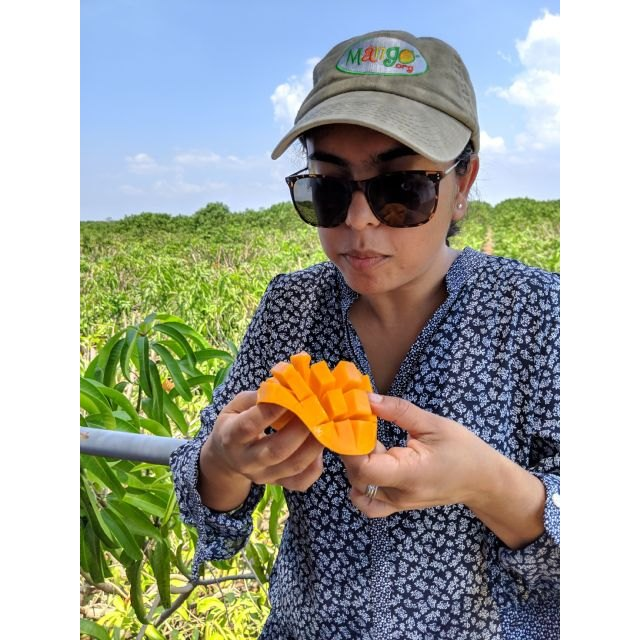 Nuestra visión es que el mango pase de ser considerado una fruta exótica a ser una fruta cotidiana en los hogares estadounidenses - 1, Foto 1