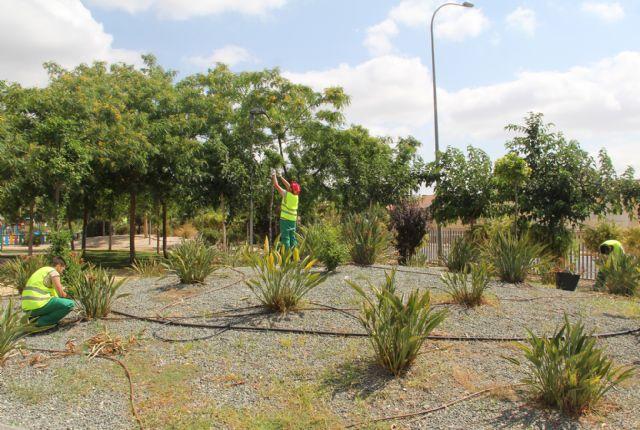 15 jóvenes del programa mixto de empleo y formación Puerto Green realizan prácticas remuneradas en Puerto Lumbreras - 2, Foto 2