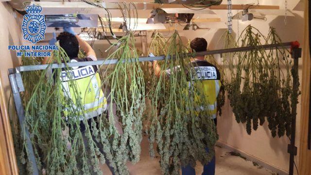 La Policía Nacional desmantela tres puntos de venta de droga en Alcantarilla - 1, Foto 1