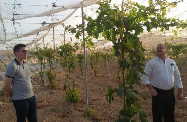 El alcalde y el concejal de Obras e Infraestructuras visitan El Raiguero - 4, Foto 4
