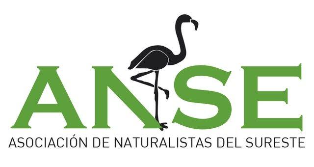"""ANSE y WWF piden un """"verdadero"""" Plan para la Protección del Borde Litoral del Mar Menor - 1, Foto 1"""