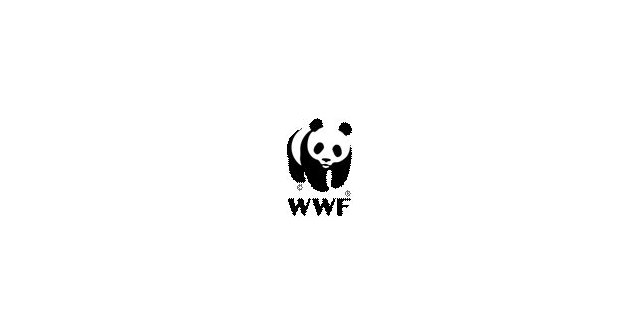 """ANSE y WWF piden un """"verdadero"""" Plan para la Protección del Borde Litoral del Mar Menor - 2, Foto 2"""