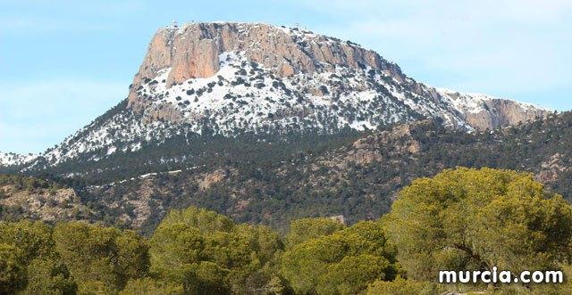 Una página web integrará toda la información sobre el Parque Regional Sierra Espuña para potenciarlo como destino ecoturístico, Foto 1