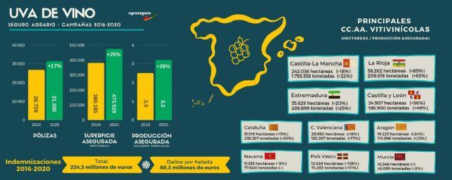La producción de uva de vino protegida por el seguro agrario en España crece un 28% en los últimos cinco años, y supera los 3,2 millones de toneladas - 1, Foto 1