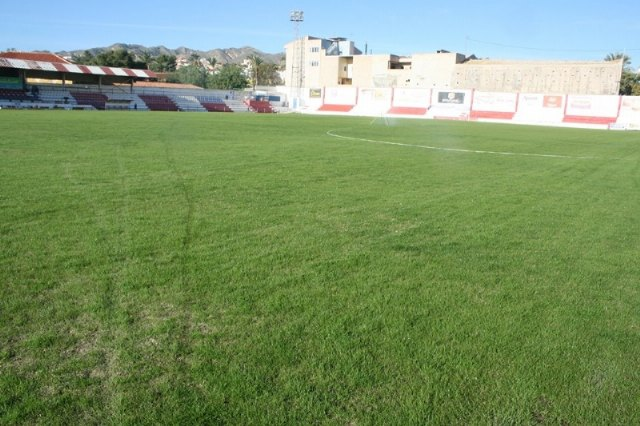 "The work of replanting the lawn of the municipal stadium ""Juan Cayuela"", which may be used in a reasonable time"