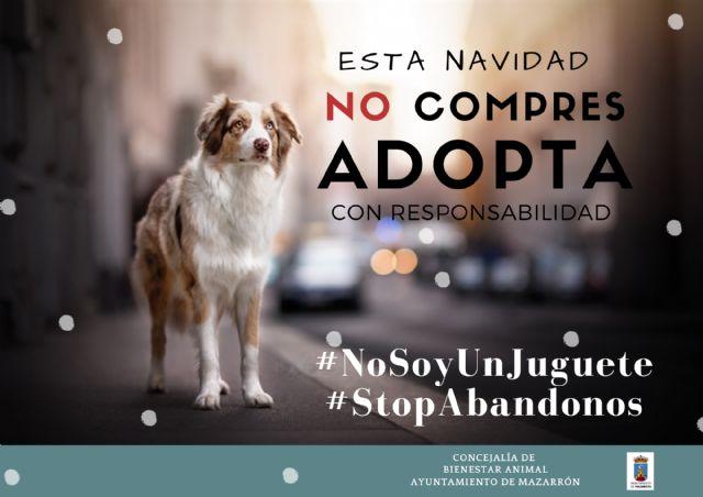 Bienestar Animal promueve la adopción para estas navidades, Foto 1