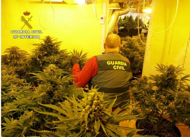 La Guardia Civil desmantela en San Javier un grupo delictivo dedicado al tráfico de droga - 2, Foto 2