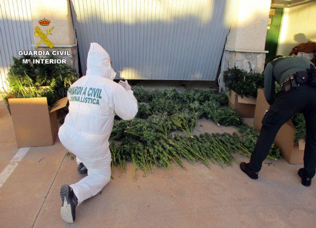 La Guardia Civil desmantela en San Javier un grupo delictivo dedicado al tráfico de droga - 4, Foto 4
