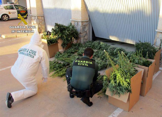 La Guardia Civil desmantela en San Javier un grupo delictivo dedicado al tráfico de droga - 5, Foto 5