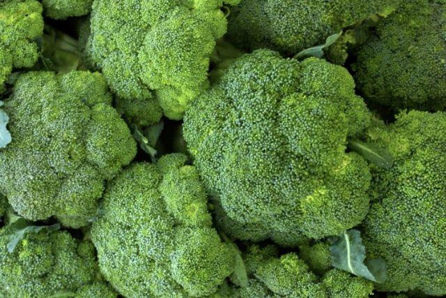 Productores polacos visitan Murcia para conocer el cultivo de brócoli