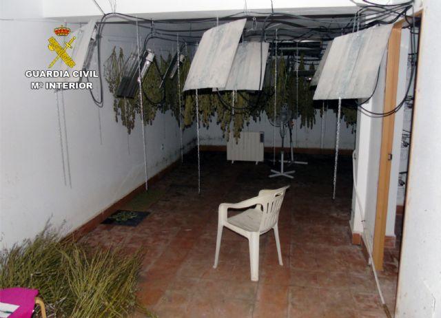 La Guardia Civil desmantela un invernadero clandestino de cultivo de marihuana en Ricote - 1, Foto 1