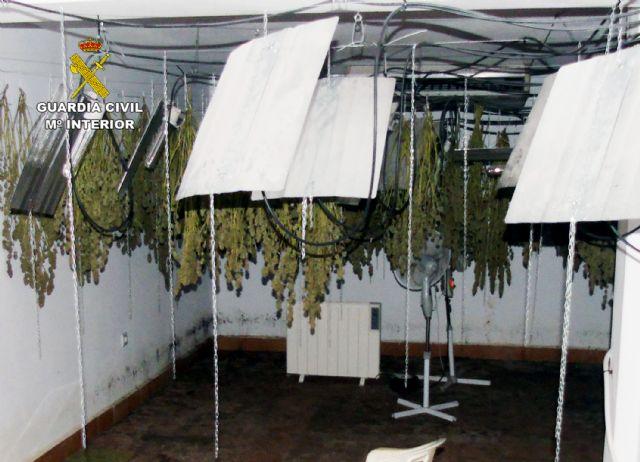 La Guardia Civil desmantela un invernadero clandestino de cultivo de marihuana en Ricote - 2, Foto 2