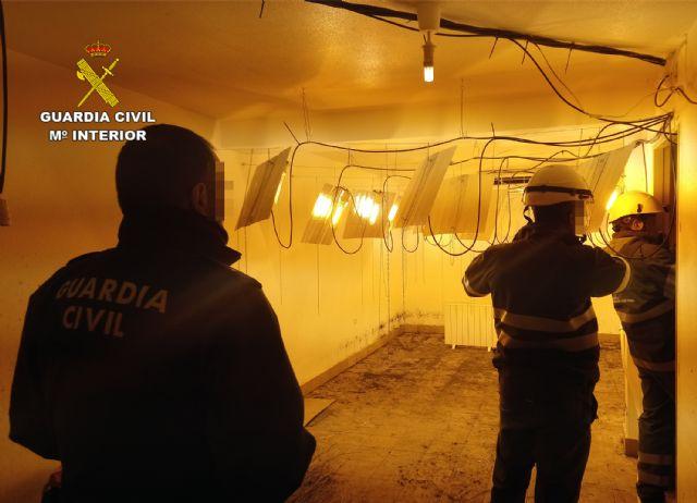 La Guardia Civil desmantela un invernadero clandestino de cultivo de marihuana en Ricote - 3, Foto 3