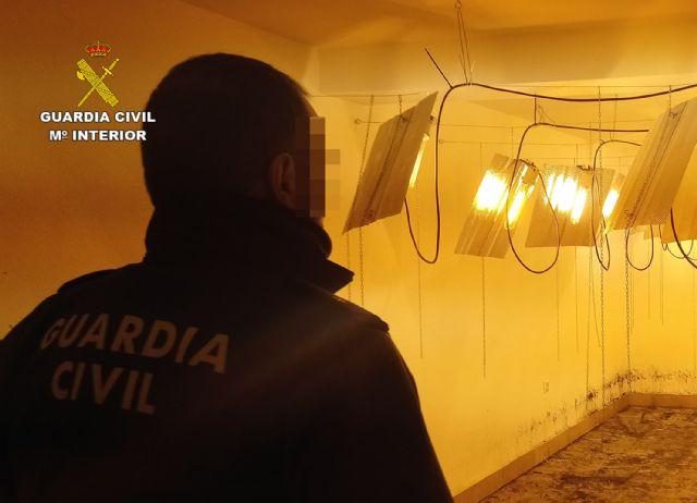 La Guardia Civil desmantela un invernadero clandestino de cultivo de marihuana en Ricote - 4, Foto 4