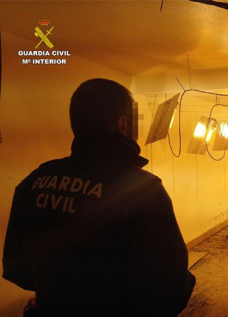 La Guardia Civil desmantela un invernadero clandestino de cultivo de marihuana en Ricote - 5, Foto 5