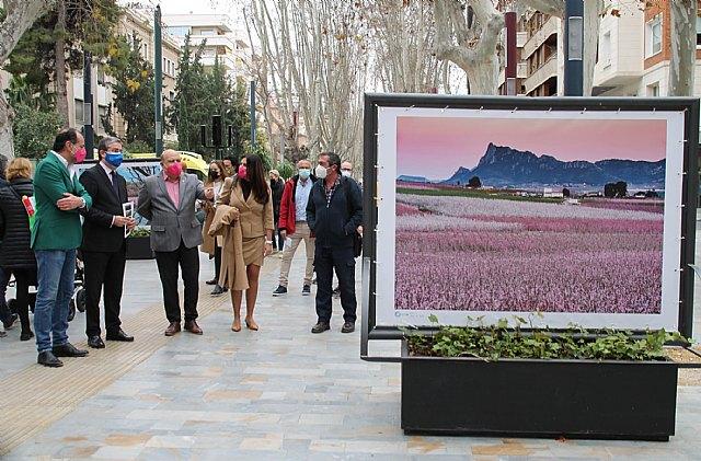 Una exposición sobre la floración en Cieza que aúna calidad fotográfica y excelencias paisajísticas - 1, Foto 1