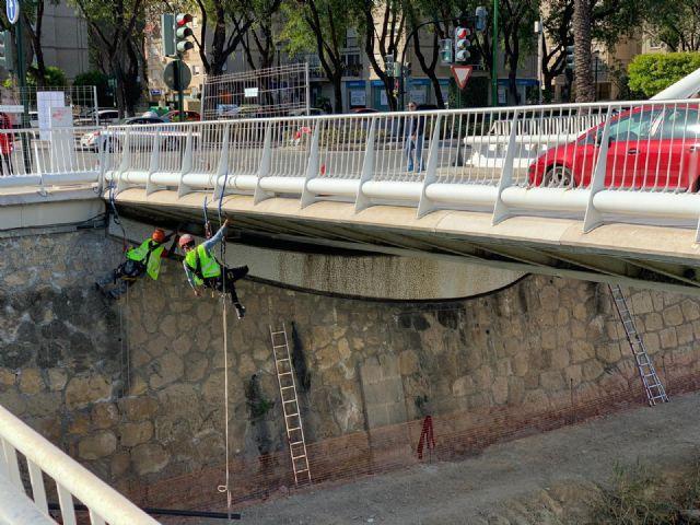 El Puente del Hospital se convierte en la ´zona cero´ del plan de actuación contra la invasión de palomas en Vistabella - 2, Foto 2