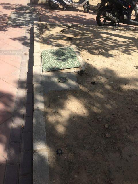 Ahora Murcia pedirá en el pleno la revegetación y habilitación de zonas verdes en espacios urbanos marginales - 2, Foto 2