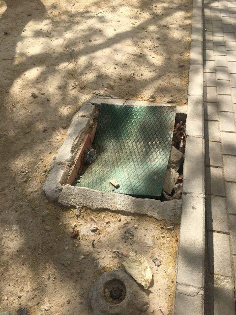 Ahora Murcia pedirá en el pleno la revegetación y habilitación de zonas verdes en espacios urbanos marginales - 3, Foto 3