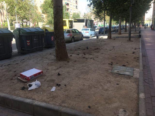 Ahora Murcia pedirá en el pleno la revegetación y habilitación de zonas verdes en espacios urbanos marginales - 5, Foto 5
