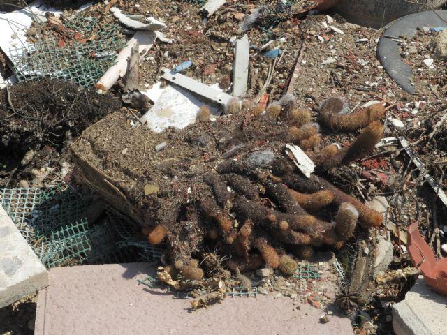 Medio Ambiente advierte de los riesgos de arrojar basuras a las ramblas, Foto 6