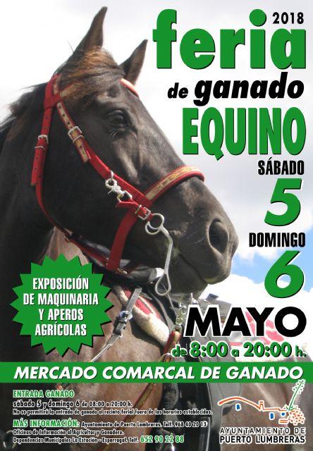 La tradicional Feria de Ganado Equino de Puerto Lumbreras abrirá sus puertas el 5 de mayo - 1, Foto 1