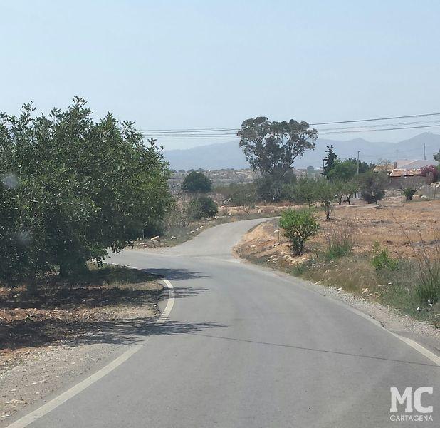 MC solicitará que se impulsen mejoras en infraestructuras y el patrimonio rural de la zona oeste - 1, Foto 1
