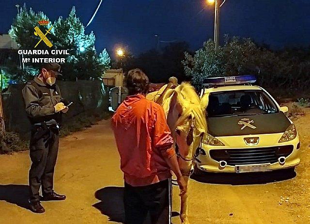 La Guardia Civil sorprende a una persona dando un paseo a caballo por La Unión - 1, Foto 1