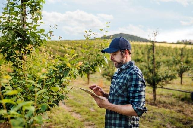Farmable, la primera app gratuita específica para la gestión de explotaciones de árboles frutales - 1, Foto 1