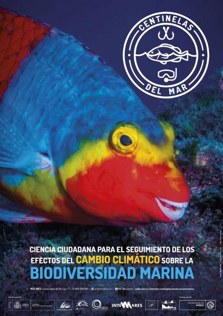 La UMU presenta los resultados de un proyecto que constata los efectos del cambio climático sobre la biodiversidad marina - 1, Foto 1