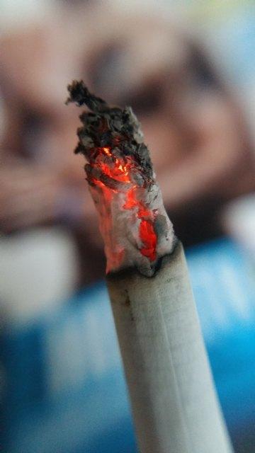 Los fumadores han reducido el consumo de tabaco durante el confinamiento - 1, Foto 1