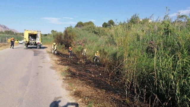Conato el incendio de cañas en zona del río Argos (Calasparra) - 1, Foto 1