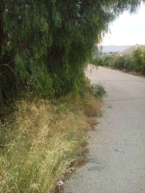 El PP respalda la petición de los vecinos de La Torrecilla para mejorar los caminos Viejo del Puerto, Azagaor, Cabalgadores, Velopache y Alcolea - 1, Foto 1