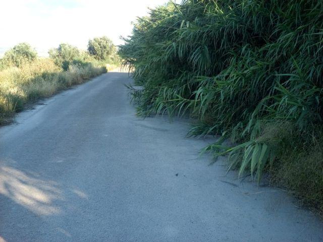 El PP respalda la petición de los vecinos de La Torrecilla para mejorar los caminos Viejo del Puerto, Azagaor, Cabalgadores, Velopache y Alcolea - 2, Foto 2