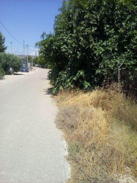 El PP respalda la petición de los vecinos de La Torrecilla para mejorar los caminos Viejo del Puerto, Azagaor, Cabalgadores, Velopache y Alcolea - 3, Foto 3