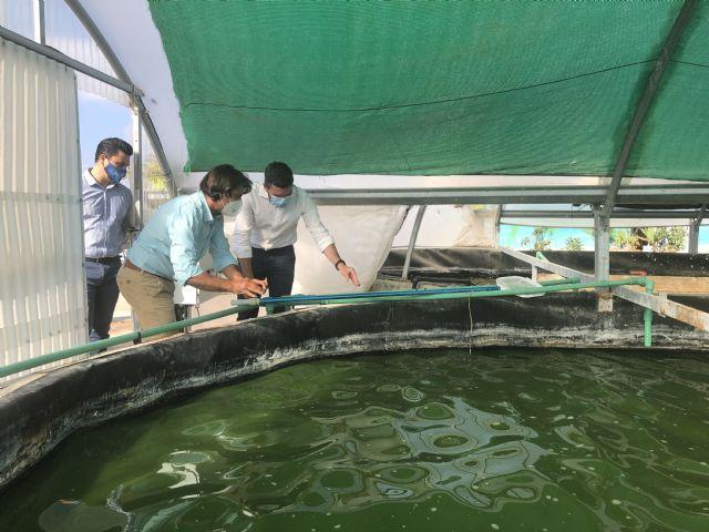 Antonio Luengo pone en valor la producción de microalgas para uso alimentario, farmacéutico o cosmético - 1, Foto 1