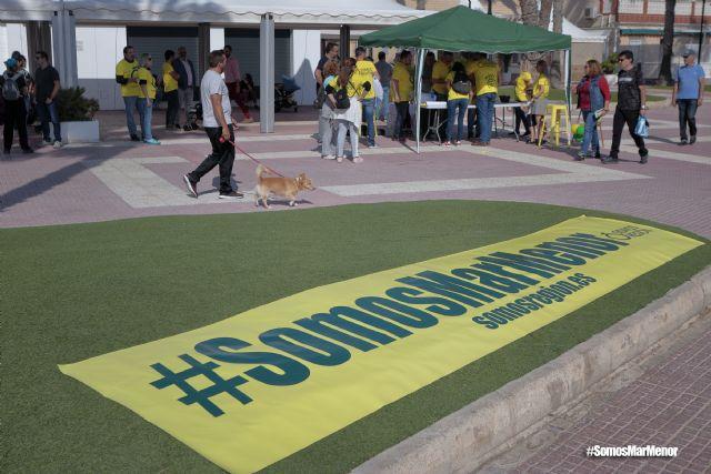 Somos Región convoca una concentración el próximo domingo en el Congreso para pedir más implicación con el Mar Menor - 1, Foto 1