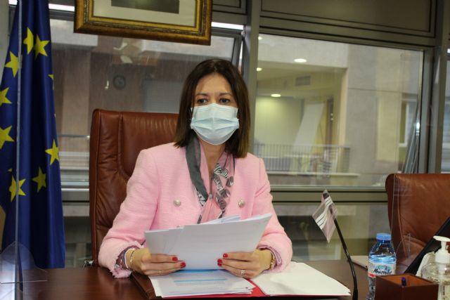 La Sanidad protagoniza el debate del Pleno municipal, celebrado ayer noche - 1, Foto 1
