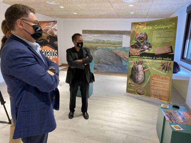 El Centro de Visitantes de La Contraparada acoge a partir de este sábado una exposición sobre galápagos autóctonos - 3, Foto 3