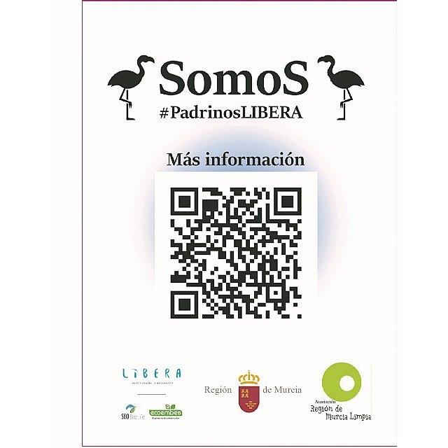 Medio Natural colabora en el proyecto ´Apadrina un flamenco´, desarrollado en las Salinas de San Pedro por la Asociación Región de Murcia Limpia - 1, Foto 1