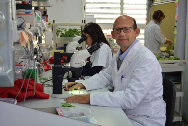 La UPCT consigue más de 1,6 millones euros del Plan Nacional para 13 proyectos de investigación - 1, Foto 1