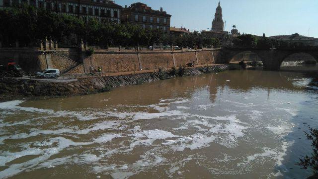 Huermur denuncia en la CHS y en la Consejería de Medio Ambiente las espumas aparecidas hoy en el Segura - 1, Foto 1