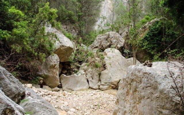 Totana apoya el proyecto de gestión silvícola no mecanizada para en entorno de la cabecera del Barranco de la Hoz, en Sierra Espuña