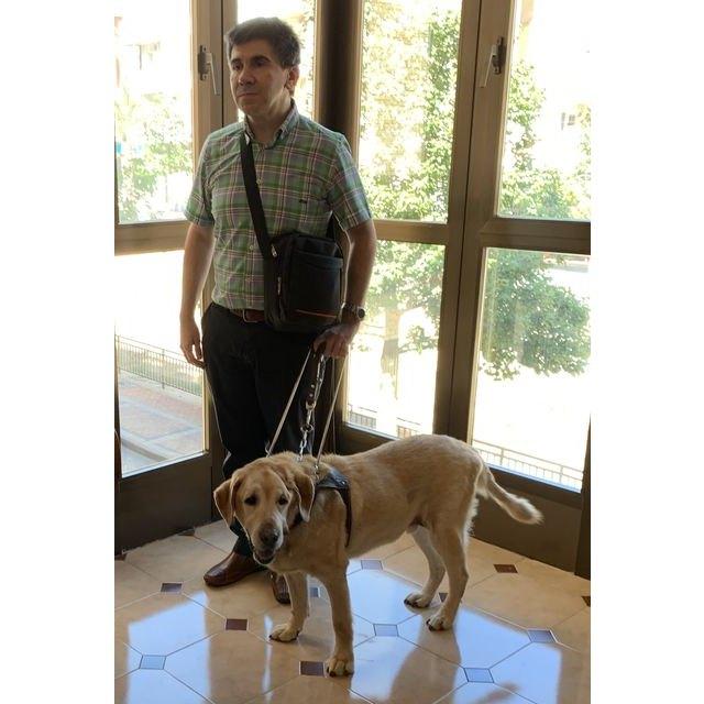 La Fundación ONCE del Perro-Guía cumple 30 años, Foto 1