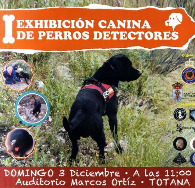 """The Dog Show of Dogs Detectors is held this Sunday at the """"Marcos Ortiz"""" Auditorium - 2"""