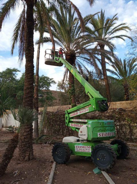 Acometen una rehabilitación integral del Jardín Padre Crisóstomo (Parque Azul) en el marco del programa de los Consejos Comarcales - 3, Foto 3