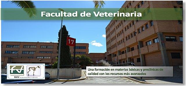 El Grupo Municipal Socialista presenta al Pleno de noviembre una moción de apoyo a la Facultad de Veterinaria de la Universidad de Murcia - 1, Foto 1