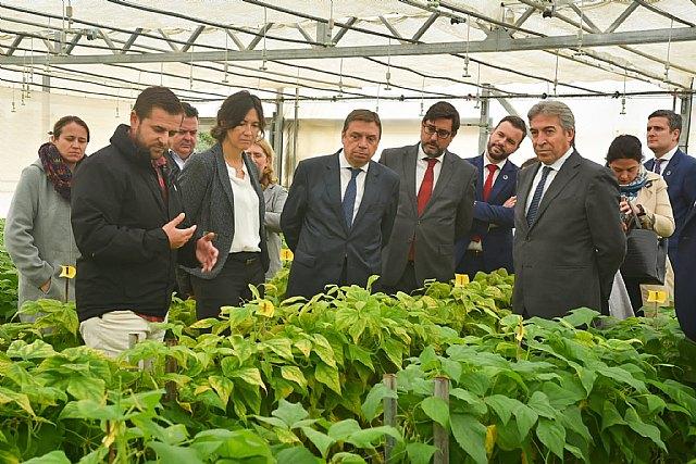El Ministro de Agricultura, Pesca y Alimentación visita el centro de investigación y desarrollo de BASF en Utrera - 2, Foto 2