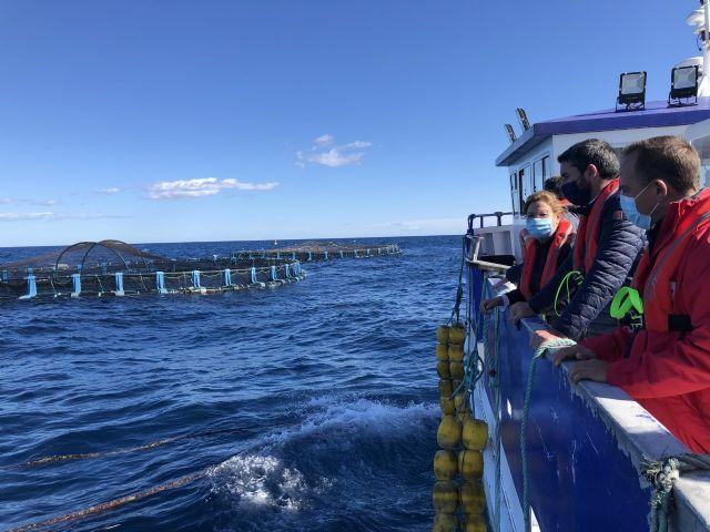 La Comunidad abre el plazo para la solicitud de ayudas al sector de la acuicultura para atenuar el impacto de la covid y la dana de 2019 - 1, Foto 1