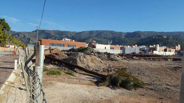 Ahora Murcia denuncia el corte de palmeras en una urbanización de nuevo desarrollo en la fuensanta - 1, Foto 1